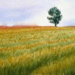 風景の写実画習作